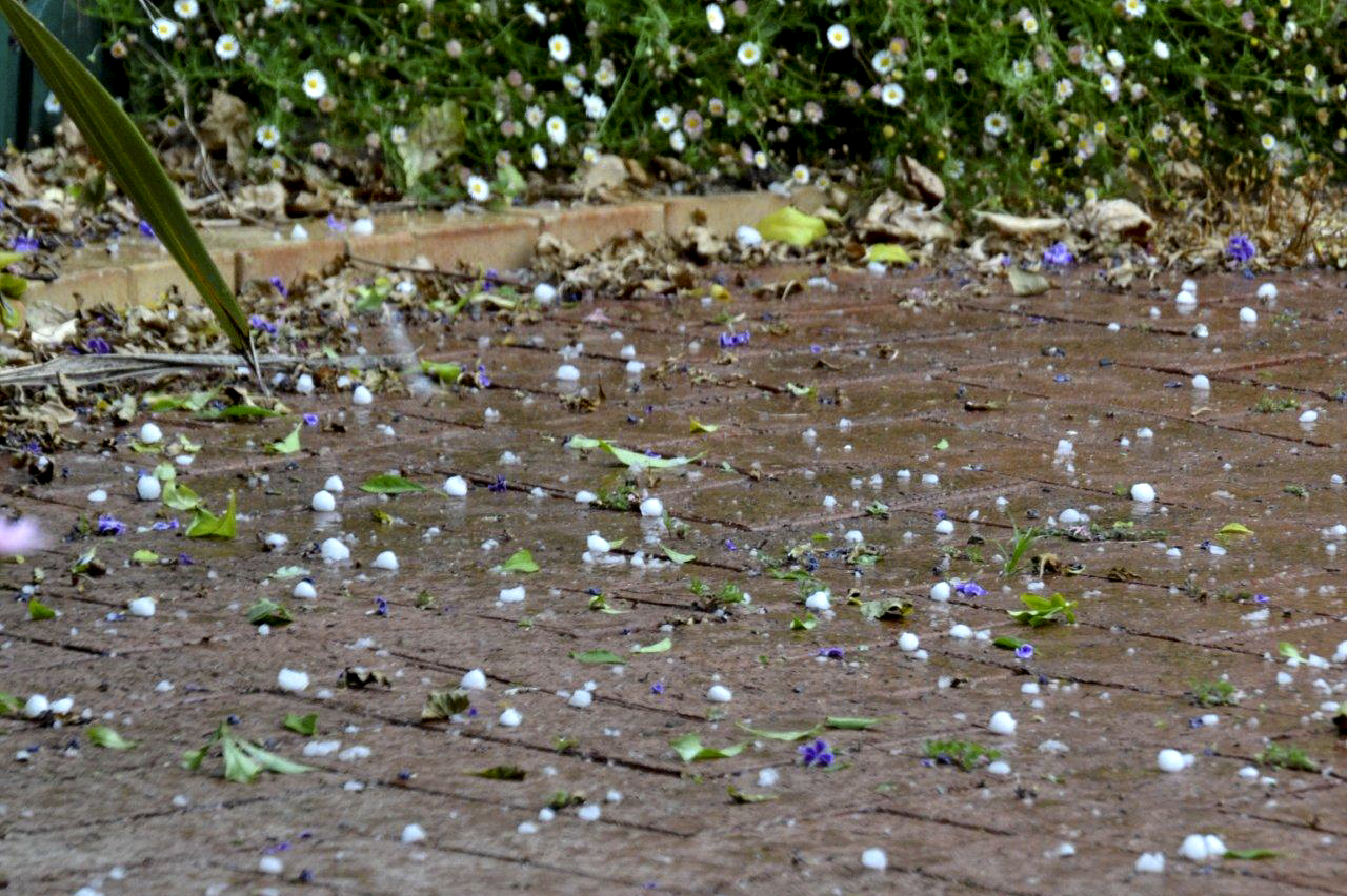 Hail Stones at Home