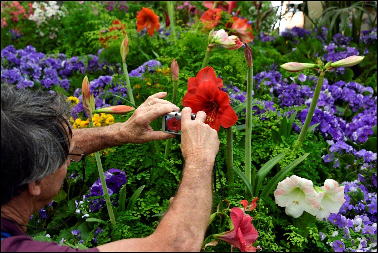 David Photographing Flowers in the Conservatory