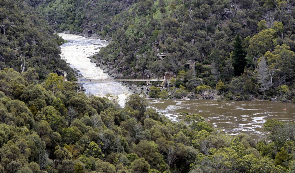 Suspension Bridge From Above Cataract Gorge