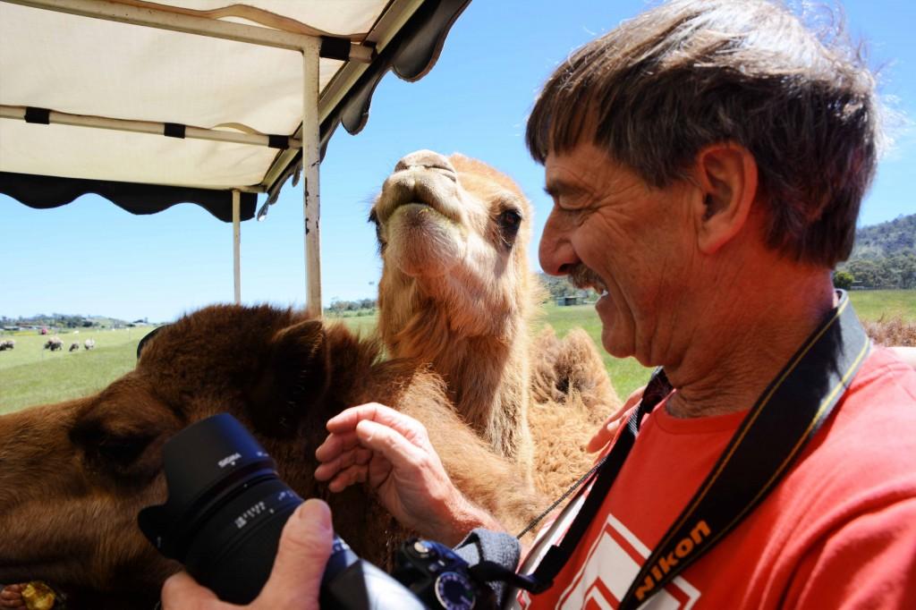 David & Camel at ZooDoo Tasmania