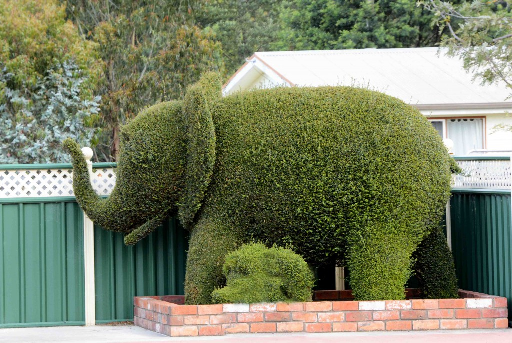 Elephant & Baby Topiary in Railton, Tasmania