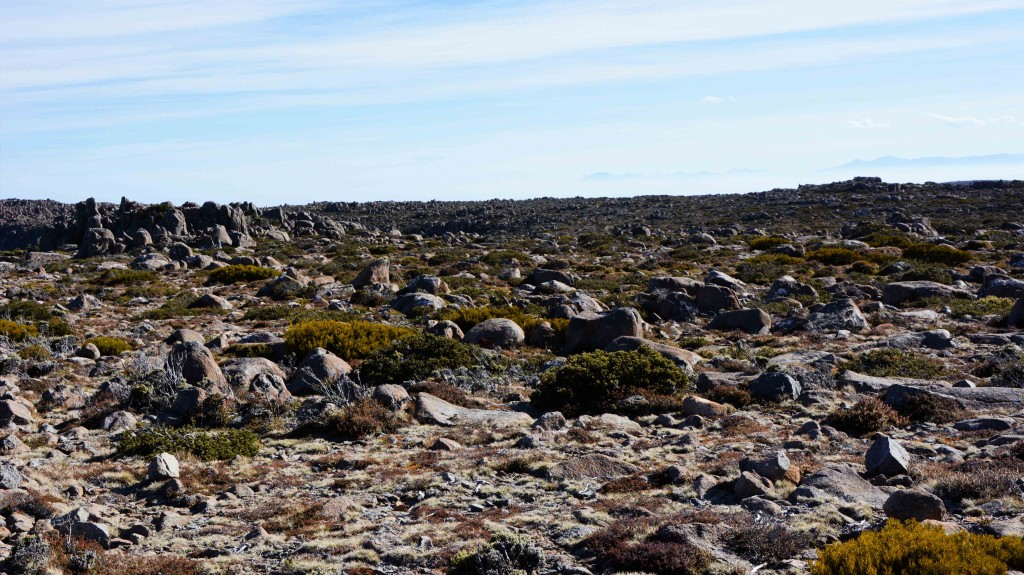 Flat Top of Mt Wellington Hobart Tasmania