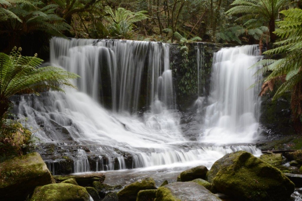 Horseshoe Falls,  Mt Field National Park, Tasmania