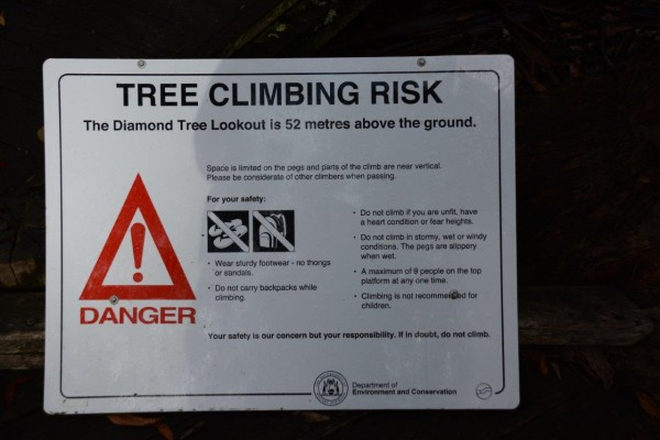 Climbing Tree Warnings