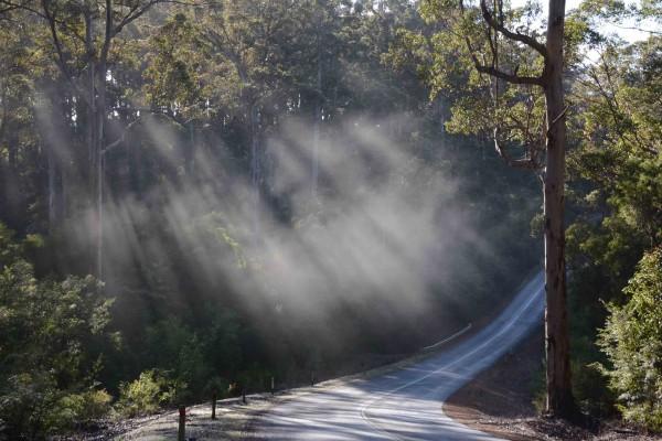 Channybearup Road