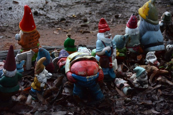 And Rude Gnomes