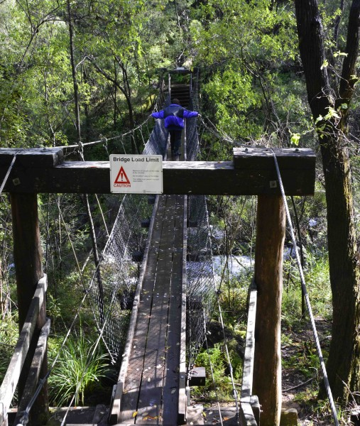 Crossing Beedelup Falls Suspension Bridge