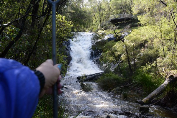 Holding On - Beedelup Falls Suspension Bridge