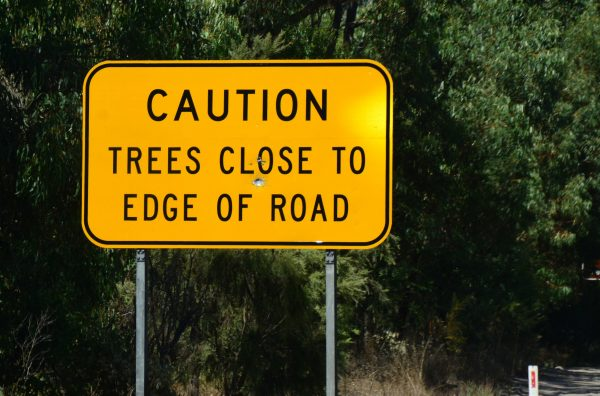 Dangerous Trees at Yanchep