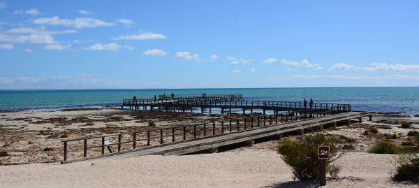 Hamelin Bay Boardwalk